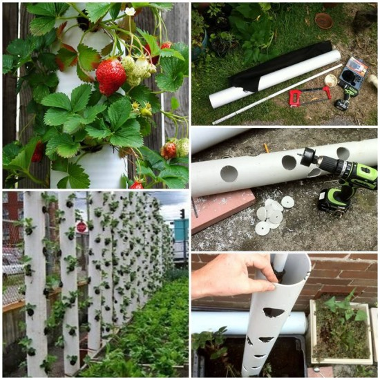 FabArtDIY-PVC-Gardening-Ideas-and-Projects-PVC-Strawberry-Tube-Planter
