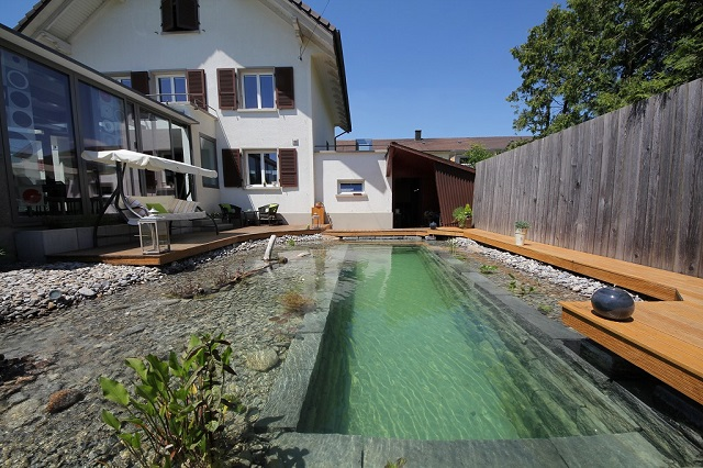 natural-swimming-pool-141