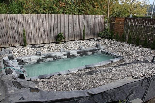 Meg lmodt k a kerti tavat s j l tett k hogy for Koi pond natural swimming pool