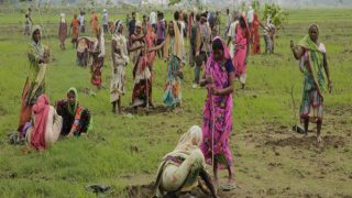 Indian women plant saplings on the outskirts of Allahabad, India, Monday, July 11, 2016. Hundreds of thousands of people in India's most populous state Uttar Pradesh are jostling for space as they attempt to plant 50 million trees over the next 24 hours in hopes of setting a world record. (AP Photo/Rajesh Kumar Singh)
