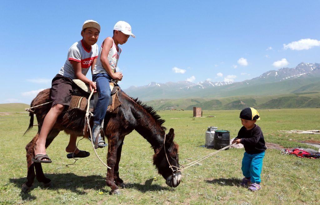 Biskek, 2017. július 13. Kirgizisztáni gyerekek szamárháton lovagolnak a kirgiz fõvárostól, Biskektõl 250 km-re délre, a 3000 méter tengerszint feletti magasságban fekvõ Szuszamir-völgyben lévõ nomád táborban 2017. július 11-én. (MTI/EPA/Igor Kovalenko)