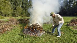 Man feeds an outdoor garden brush burn